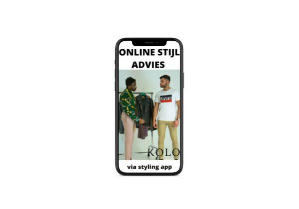 Online stijladvies